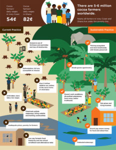 Sustainable Cacao Farming